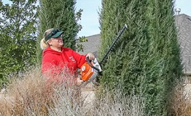 TenderCare employee pruning a tree