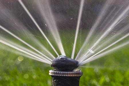 Close-up image of a lawn sprinkler spraying water